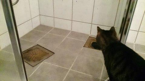 Slik lå dekslet da vi kom inn på badet.